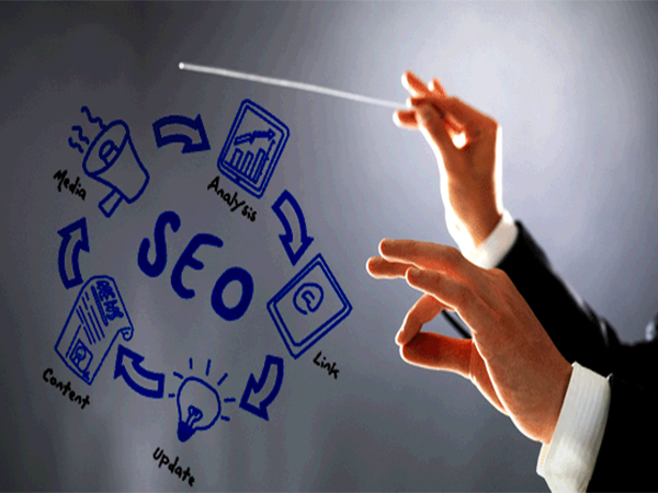 10 Questions You Should Ask to Assess an SEO Software