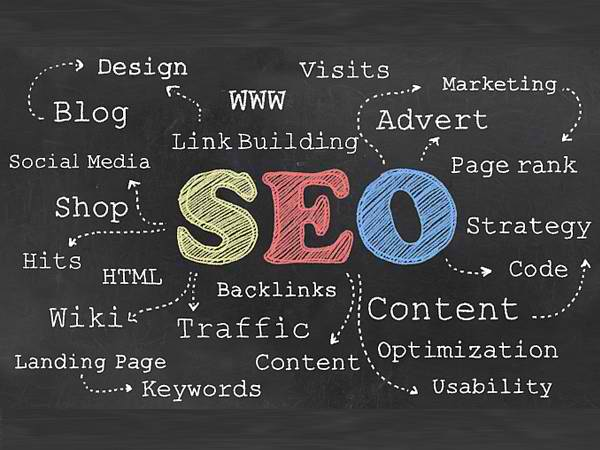 DIY SEO Software vs. Professional SEO: Which Is Better?