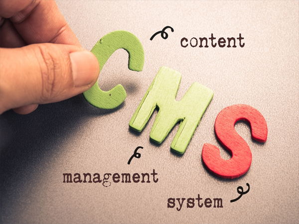How Content Management Software Reviews Help to Select the Best CMS