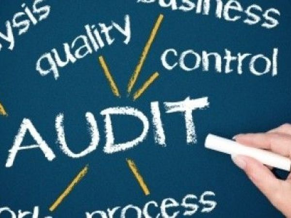 How to Evaluate an Audit Software: A Guide for Buyers