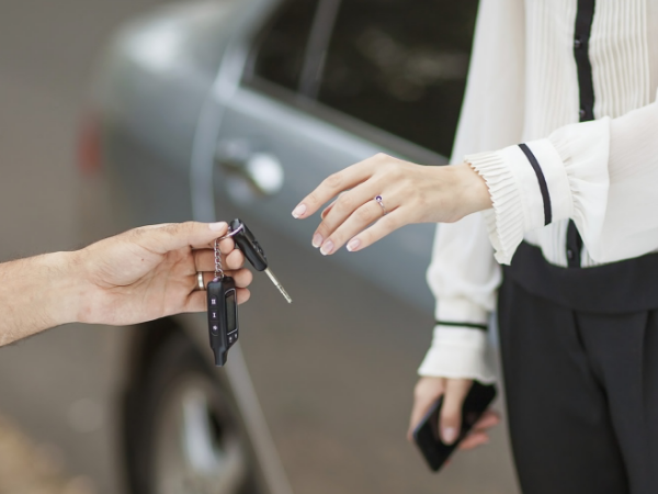 The Top Car Rental Software and How to Choose the Ideal One