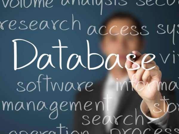 What Are Some Top Performing Database Management Software?
